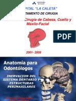 (TEORIA) INERVACION DEL SISTEMA DENTARIO Y LAS ESTRUCTURAS P.ppt