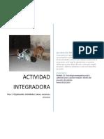 ACTIVIDAD INTEGRADORA Fase 3. Organización. Actividades, tareas, recursos y procesos