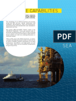 N-Sea Offshore Capabilities folder 2014.pdf