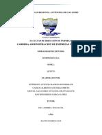 Análisis Interno Cadena de Valor y Matriz EFI 3541519