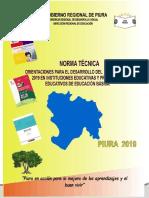 NORMA TÉCNICA REGIONAL 2019.docx
