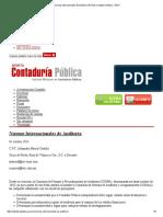 Normas Internacionales de Auditoría _ Revista Contaduría Pública _ IMCP