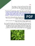 2 تكاثر النبات