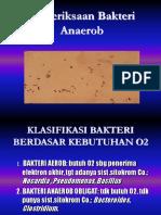 pemeriksaan-bakteri-anaerob