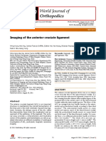 Anterior cruciate ligament imaging