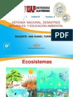 Semana 8.1 Ecosistema