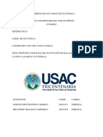 Informe de Guira a Guatemala