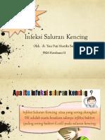 250040018-penyuluhan-isk-26-11-2014-ppt.ppt