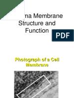Plasma Membrane Report(ROY)