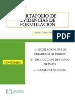 PORTAFOLIO-EVIDENCIAS- FORMULACION-CORONEL GOMEZ FABIOLA.pdf