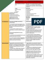 SOCIETĂȚI COMERCIALE.pdf