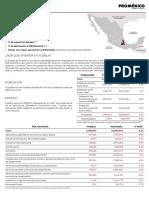 Las 10 principales ocupaciones en Puebla