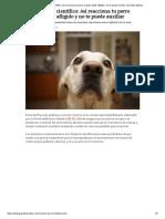 Experimento Científico_ Así Reacciona Tu Perro Cuando Estás Afligido y No Te Puede Auxiliar _ Grandes Medios