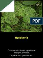 Herbivoria 2016