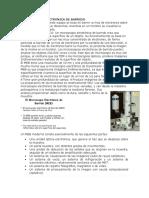 MICROSCOPIA ELECTRONICA DE BARRIDO.docx