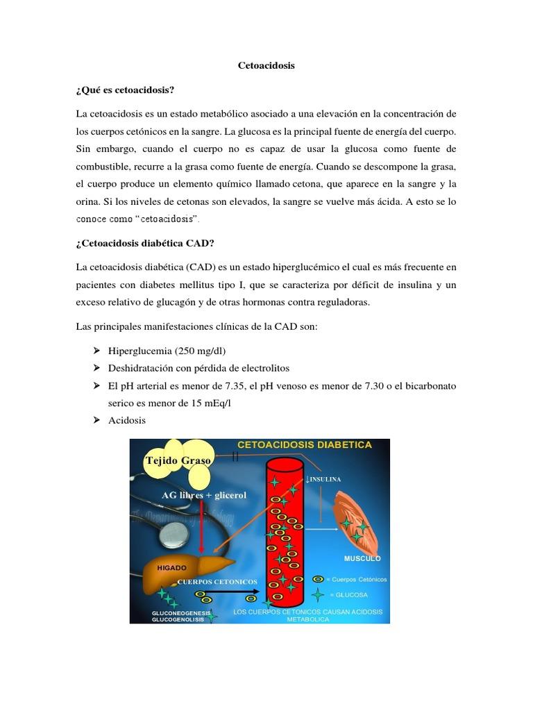 cetoácidos y cuerpos cetónicos en diabetes