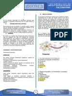 Bases Biológicas de La Conducta - VERANO