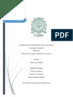 Informe Sobre La Pam( Problemas Ambientales Mmineros