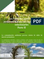 Yammine - Los 7 Grandes Problemas Medioambientales Del Siglo y Como Solucionarlos, Parte II