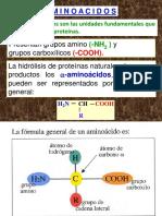 Aminoàcidos 14.pdf