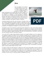 Nutrición Deportiva - Wikipedia, La Enciclopedia Libre