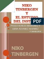 nikotinbergenyelestudiodelinstinto-130603160037-phpapp02.pptx