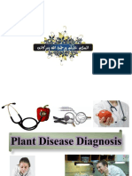 plantdiseasediagnosis-7-2