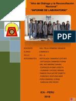 DENSIDAD-DE-CAMPO-CONO-DE-ARENA.docx