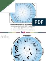 DiSC Cultura-Organizationala Silvia RO.pdf