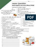 quantifiers-grammar-drills_107561.docx