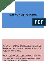 UJI FUNGSI GINJAL & Nitrogen Non Protein