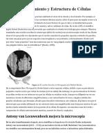 El Descubrimiento y Estructura de Células.docx