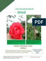 La Célula 5º Edición