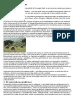 La evolución de las especies.docx