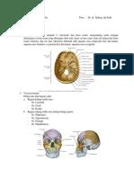 PBL Modul 1. Anatomi - Antoro