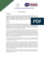 03b. Estudio de Mercado.pdf