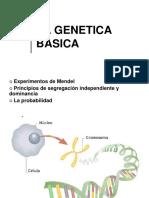 GENETICA (9)