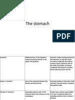 stomach.pptx