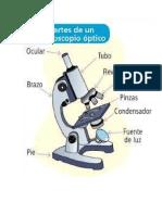 cuál es la función del micrómetro.docx