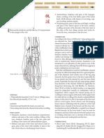 GB-43.pdf