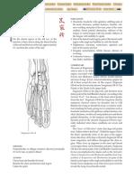 GB-44.pdf