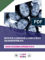 INJUVE - Evaluación Jóvenes en Desarrollo 2014.pdf