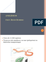 anelideos.pps
