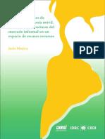 Mujica-Estrategias de acceso a.pdf