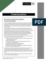 PAA_Prueba_Practica (1).pdf