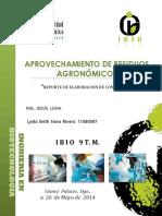 232392146-Practica-de-Compost.docx