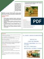JABON DE PEREJIL.docx