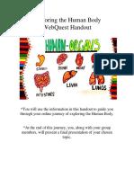 human body webquest paper handout-1