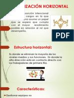 Organización Horizontal Ss