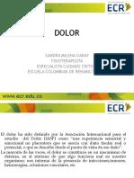 DOLOR 2.pdf